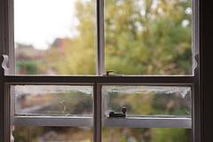 Birkenhead double glazed sash windows